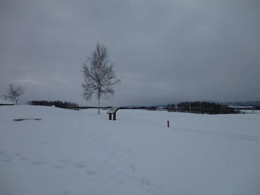 「新栄の丘」は数少ない除雪された駐車場がある場所なので、ここでは安心してスケッチできました 晴れていれば十勝連山がきれいに見えるはずです