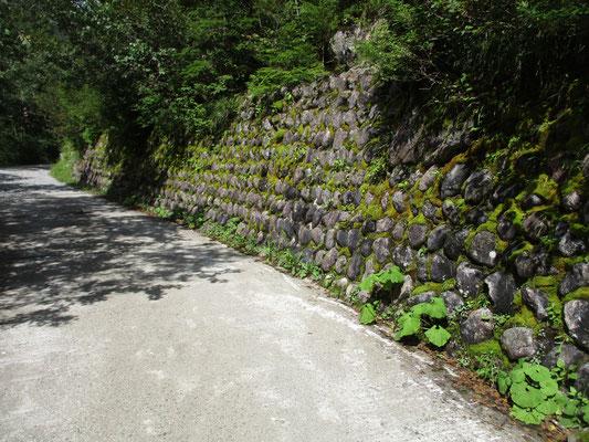 当日の目的地「わさび平」までは林道歩き わさび平の名が示すように、昔はわさび採取などで人の往来があった名残なのだろうか きれいな石垣が残っている