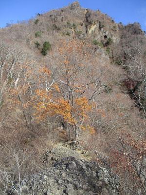 急登を越えて稜線に乗り、これからが鎖場の正念場