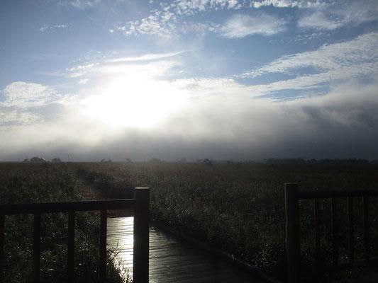 まばゆい朝の光が輝く
