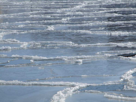 氷結の釧路川