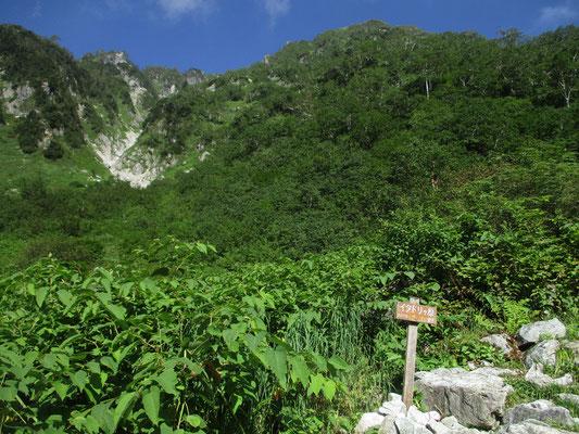 イタドリガ原という場所に出る 日差しは強いし、緑深い谷筋の登りでサウナ状態 ほぼ熱中症になりかけそうな登りでへばる