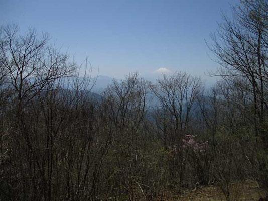 権現山山頂からはまだ雪を戴いている富士山が見えました