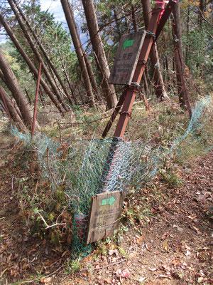 稜線近くの古いシカ柵に設置した標識が落下していた