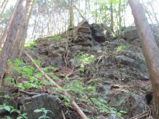大きな鋭い岩が岩峰のように壁になっていました 植林の山になっていますが、植林前の姿はどんなだったのか…