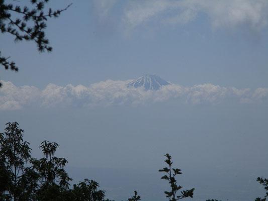 登りでは展望台にて富士山が頭を出していた