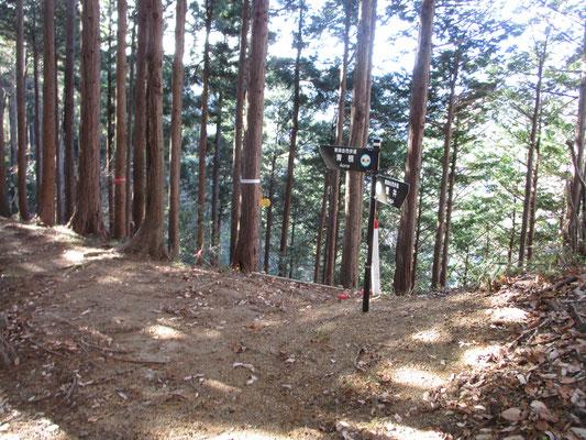 青根に抜ける道がだんだんと植林帯になっていくと、途中から舟山の山頂に向け適当に登っていく