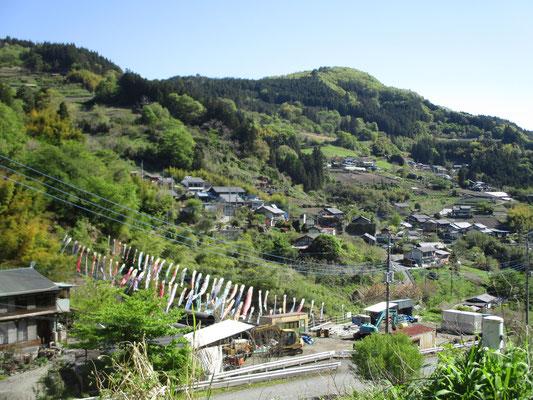 登山口に向かう終点の村・那須では川をはさんで鯉のぼりが数えきれないほど泳いでいました