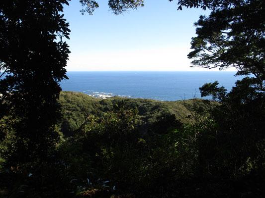 山頂から太平洋の眺め 前回はここで暫くスケッチしていたらイルカの軍団が泳いでいるのが確認できました