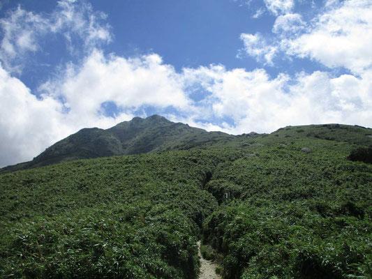 雲が晴れた瞬間に振り返って見た宮之浦岳