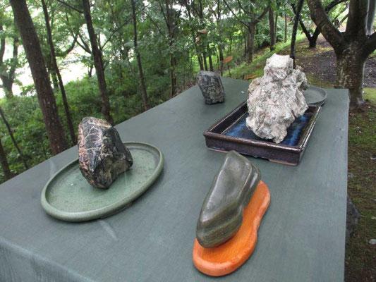 去年につづき奇石の展示が今年もありました