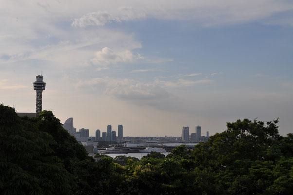 フランス山越しに見える横浜港 マリンタワーが見える山下公園方面です