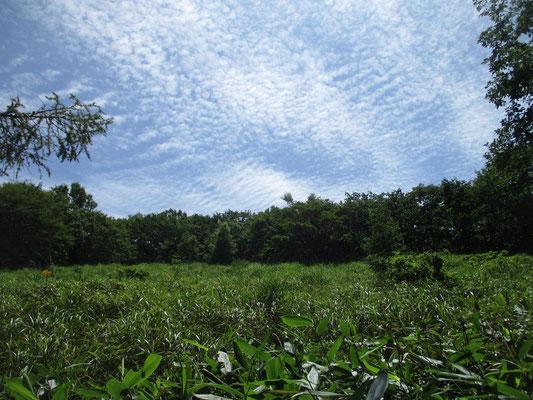 朝方曇っていた空も、一気に青空