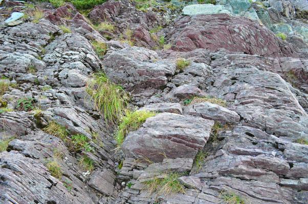 色合いが特徴的な岩石