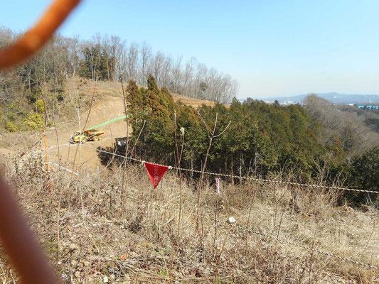 工事柵の向こうには超大型重機が・・・オオムラサキが好んだエノキもなくなった