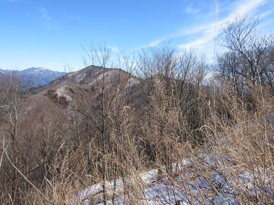 向こうを見れば、先程ピストンして登ってきた足和田山が見える