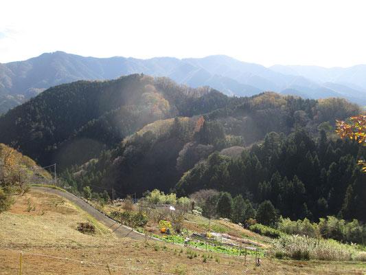 長閑な集落の風景だが急傾斜の耕作地など、暮らしは大変と思う