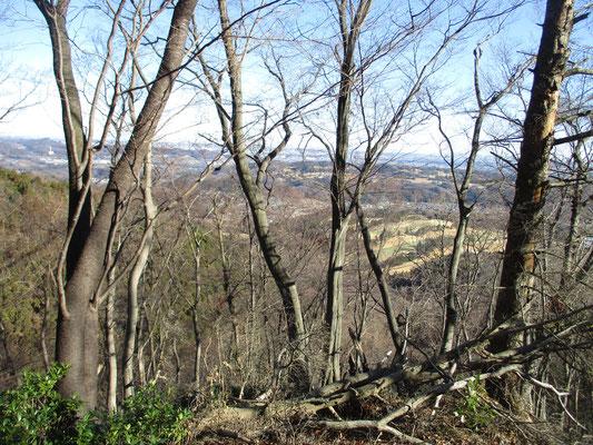 木立の合間から、出発地のゴルフ場が足下に見え、厚木の市街地が見えるようになってきます