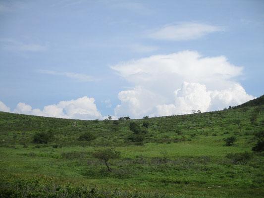 昼を過ぎるとモクモクと積乱雲が成長し始める