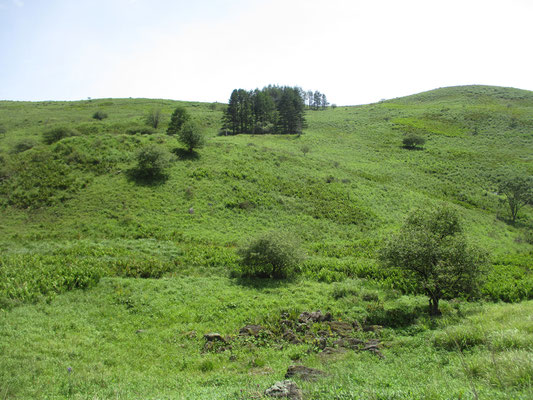 高原の面白い景観