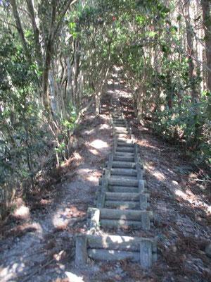 急な階段の一つ でもこれはかなりいい状態の階段です
