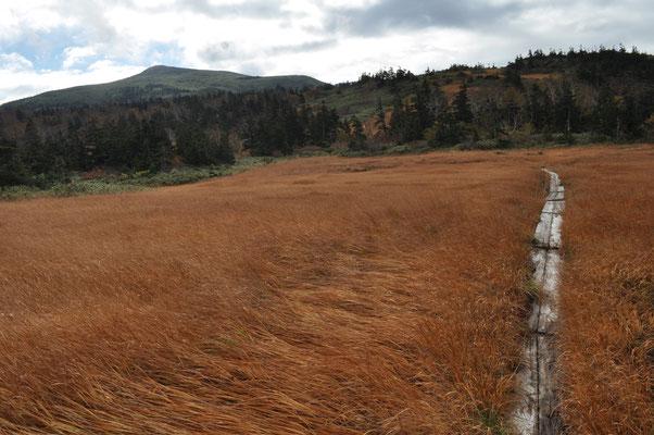 草紅葉と乳頭山 そろそろ下山開始です