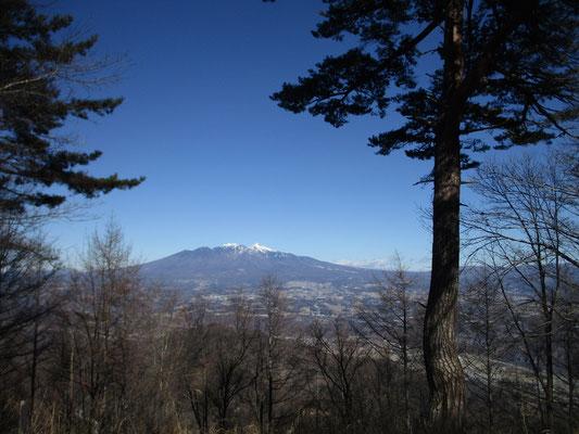 つぶらの松と八ヶ岳