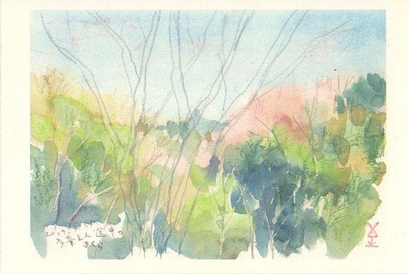 多峯主山(とうのすやま)のさくら