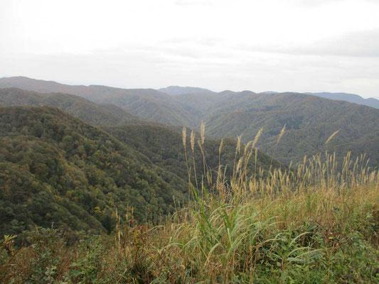 一番の展望地 しかし鳥海山は背中の方で藪となっているので見えません