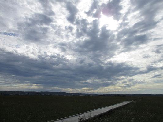 戻ってきた午後の湿原 一日、いい天気に恵まれスケッチも描け、いい旅の終章となりました