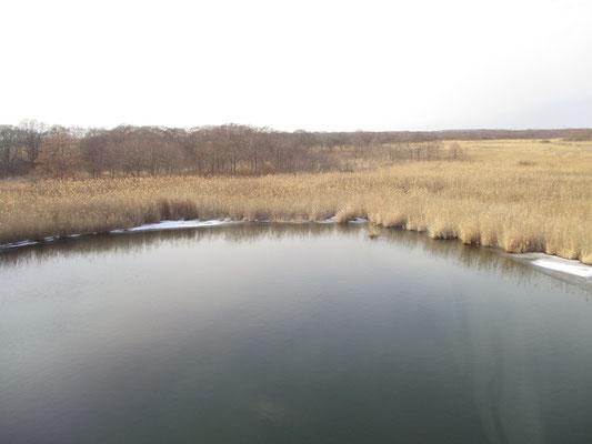 水も凍結しておらず、完全に秋の景観