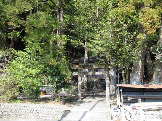 まさに神社の中から登りはじめます