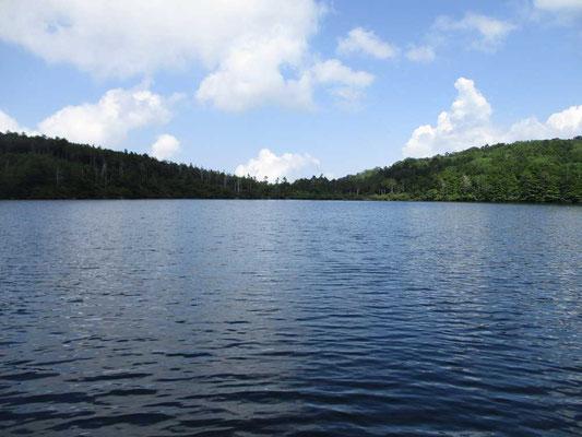 白駒池と夏空