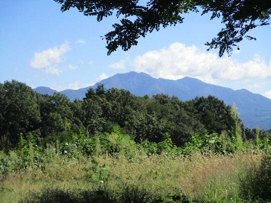 秋晴れの空に茅ヶ岳がくっきりと見えます