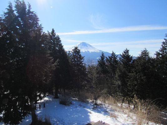 足和田山の展望台から見える富士山 かろうじてここだけ樹木を切っているのか…