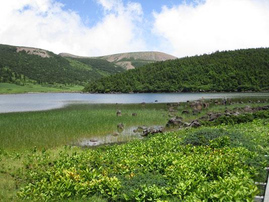 東吾妻山から下山し、鎌沼まで足を伸ばしました