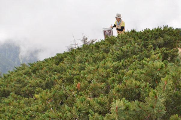 デカイ山頂標識を利用してスケッチブックを置き塩見岳を描いているところ