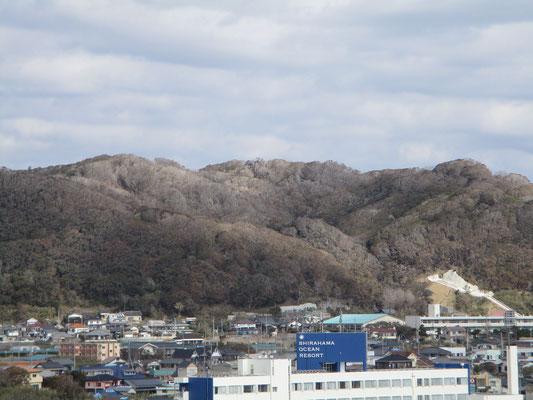 白っちゃけた城山につづく東の稜線部