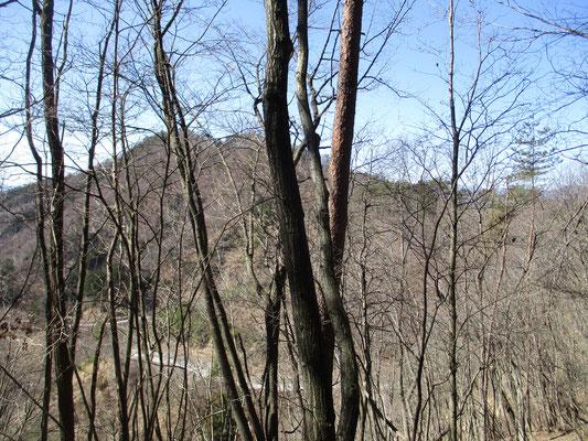 稜線を辿り上条山996mを越えて、平沢集落への下山道に入る地点 スケッチしたピークを見上げる