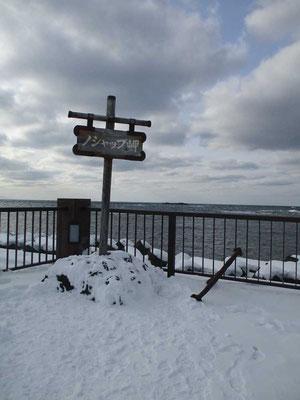 ノシャップ岬までやってきました