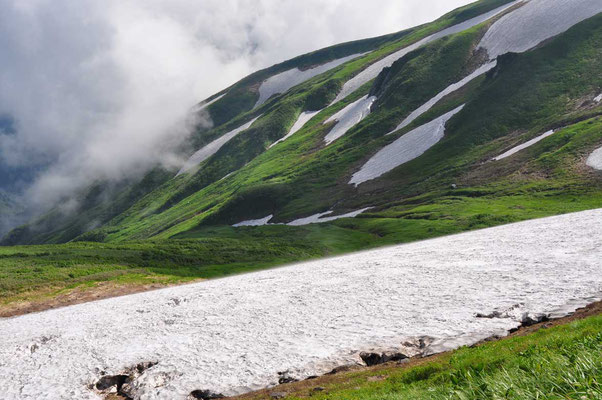 御西小屋に向かって稜線南側の谷 地形や風向き、強さなどによって雪のたまり具合も異なって残雪と草原の美しい模様となっています