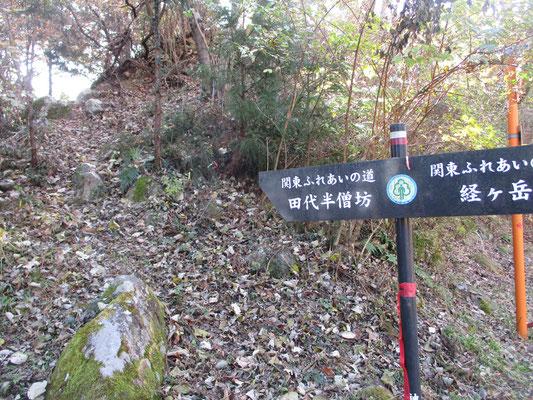 やっと法華峯林道に到着 この尾根は急登でもありバリエーションルートでかなり足元も不安定 しかし「西山を守る会」の事務局としては大勢で歩いて踏み跡をつけ、西山オススメ・ルートにしたいと云う目論見