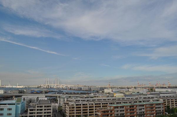 展望台テラスからの横浜港 この間の西日本豪雨の復旧の最中、ドサクサ紛れで押し通した「IR法案」 候補地でもあった横浜誘致はこの写真の界隈です 横浜市長は選挙前の'公約'で白紙と言いましたが、最近何やら怪しげな雰囲気も? こんな所に博打施設なんぞ持ってきてほしい人、居るんでしょうか??