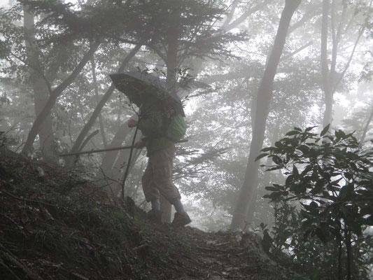 霧にけむる中を登る