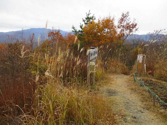 山頂にある「夢叶う霧訪の鐘」ついてみるとお寺の鐘みたいな音でした