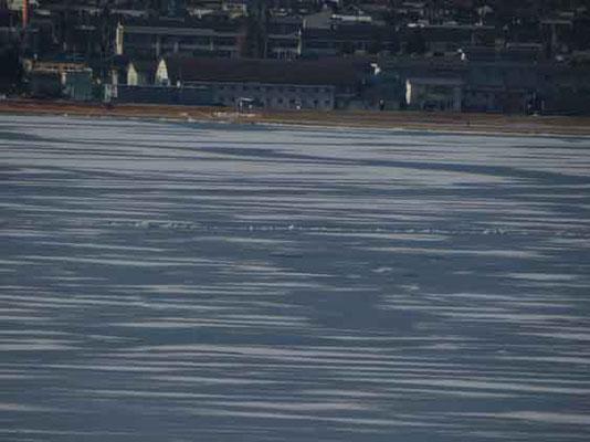 向こう岸に近いところにどうやら御神渡りは出現しているようでした 諏訪湖は広いのでサービスエリアからは見えにくかったようです