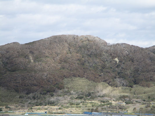灯台から正面に見た城山