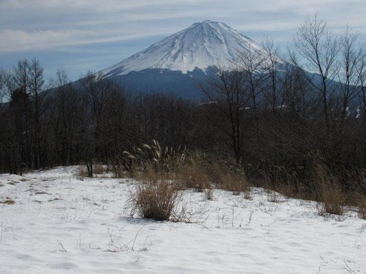 三湖台からの富士山 あっぱれ!