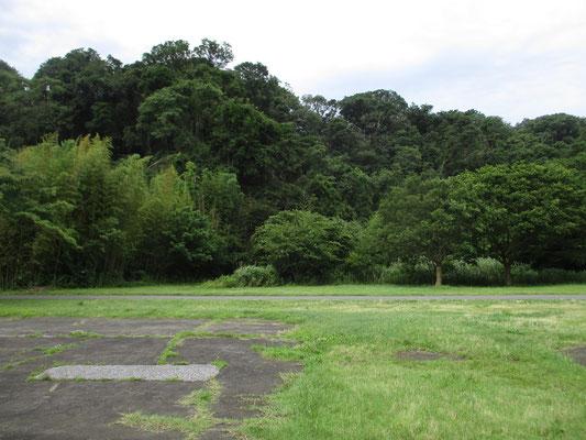 が、かつて何かの建造物があったであろう土台の形跡もところどころにある