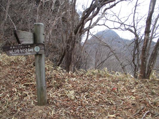 スルス岩の向こうに相馬山